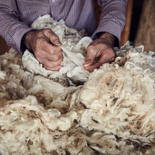 de la laine merinos certifée PURE MERINO WOOL par The Woolmark Company